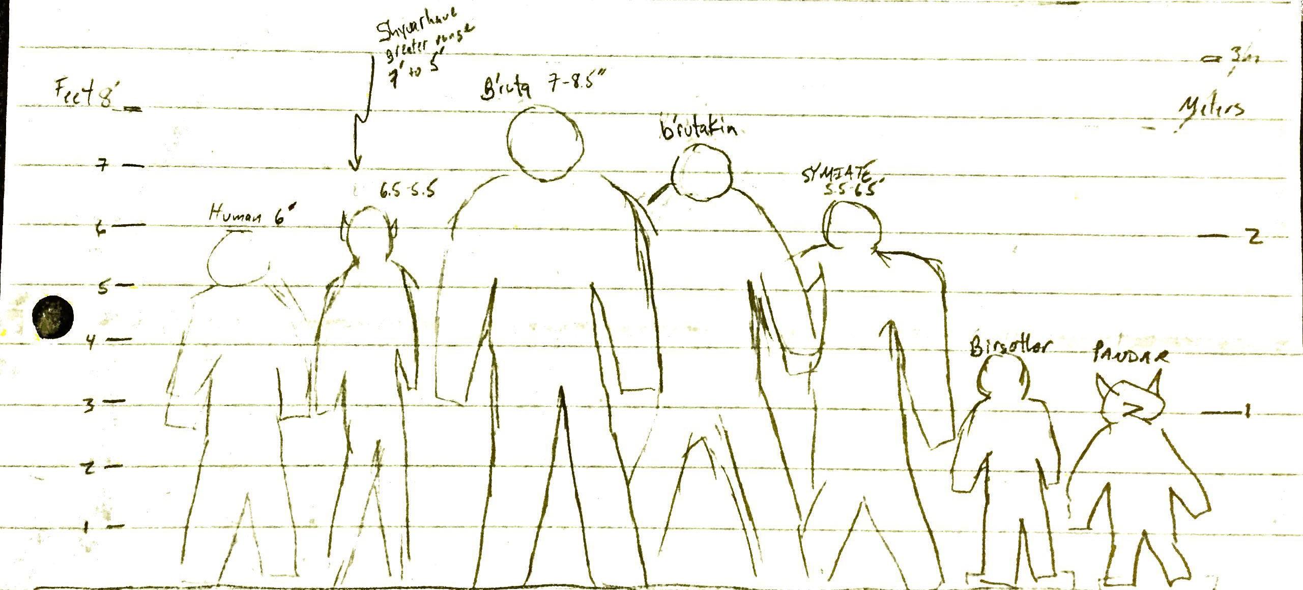 First height chart-p1